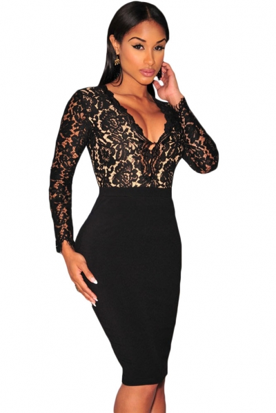 Black Lace Nude Illusion Long Sleeves Dress