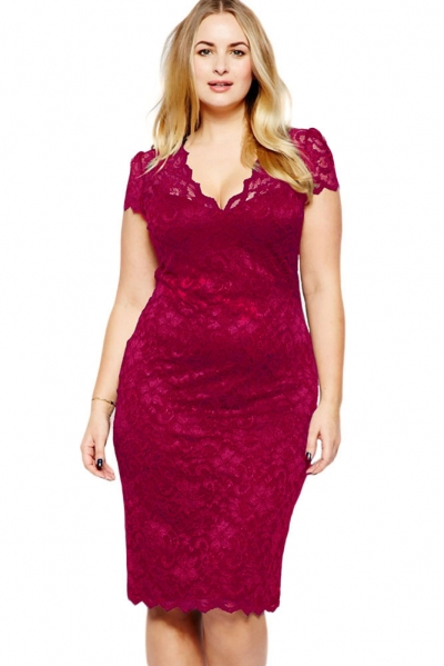 Wine Scalloped V-neck Lace Plus Size Midi Dress
