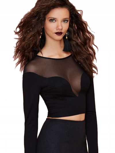 Sexy Seamless Mesh Inlay Long Sleeved Black Cropped Top ZEKELA.com
